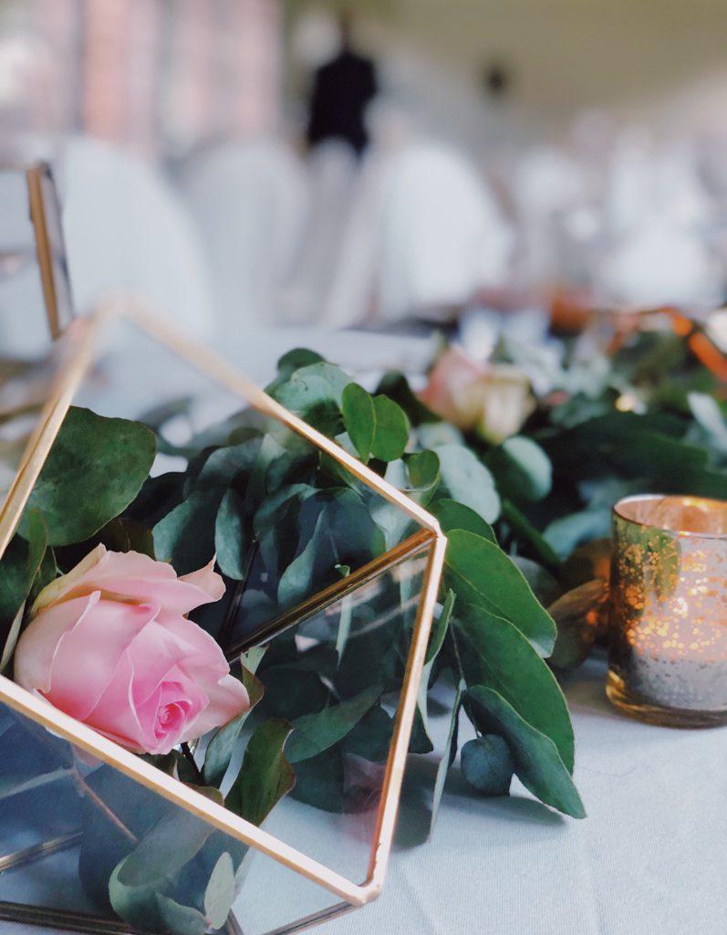 roze roos in gouden omkadering