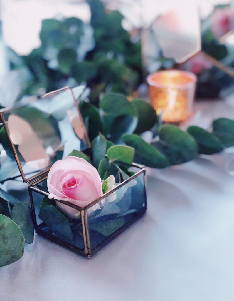 roze roos in glazen doos