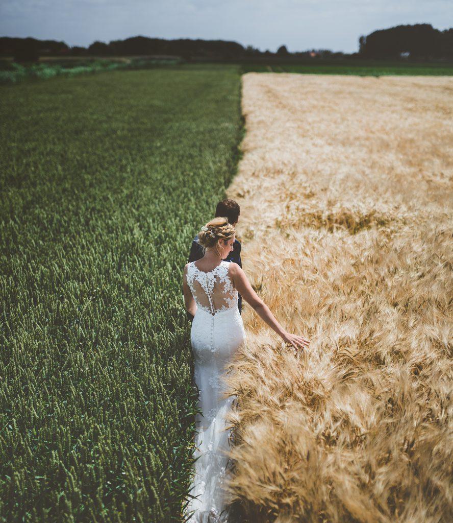 Trouwfoto van bruid en bruidegom in graanveld