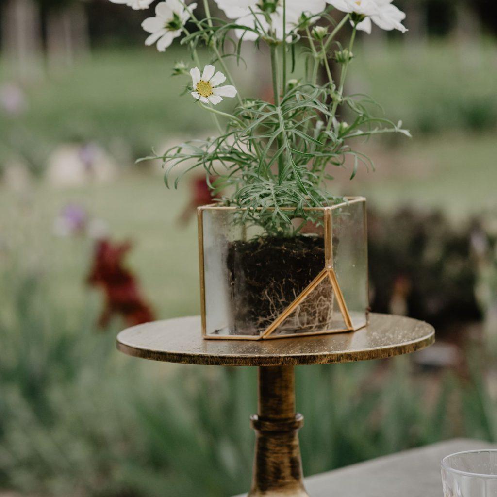 bloemen tijdens een styled shoot in de provence door event'L